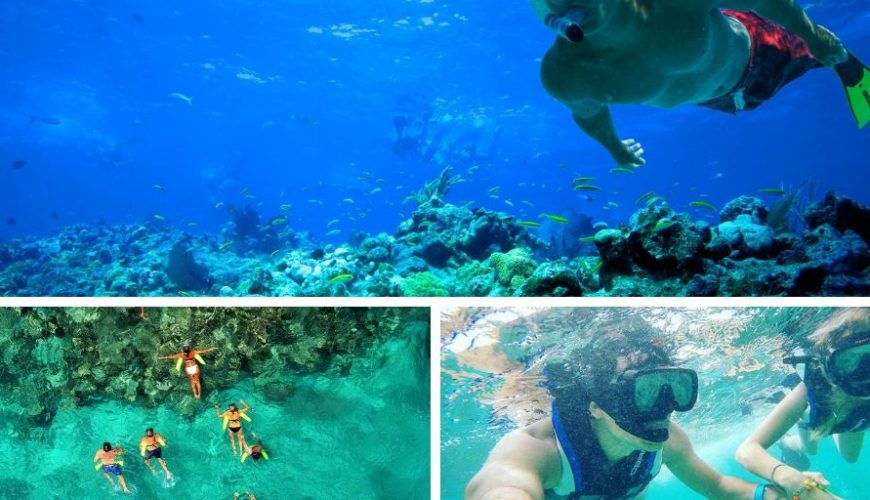 snorkeling-in-punta-cana