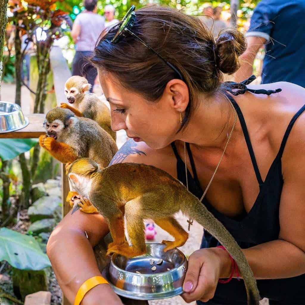 Monkeyland - Punta Cana