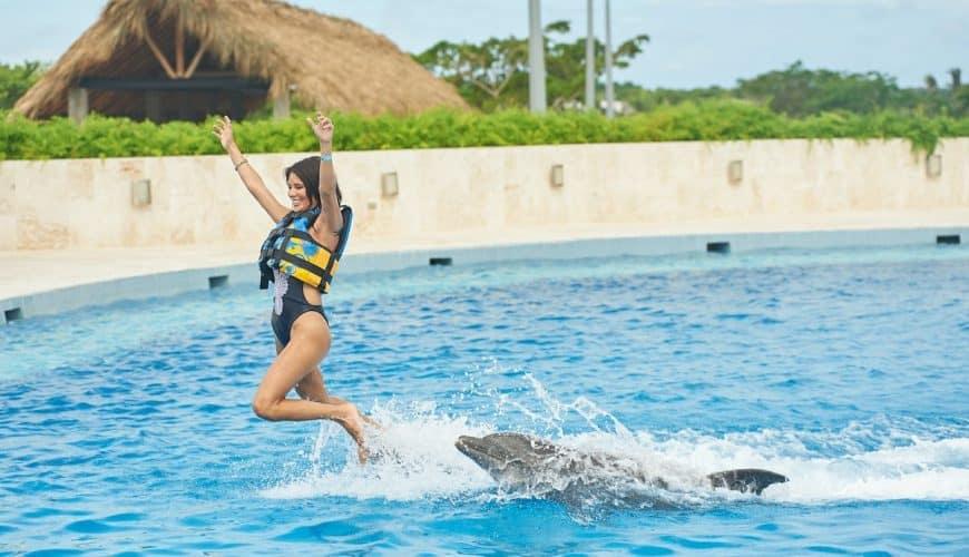 Dolphin Royal Swim in Punta Cana Adventures