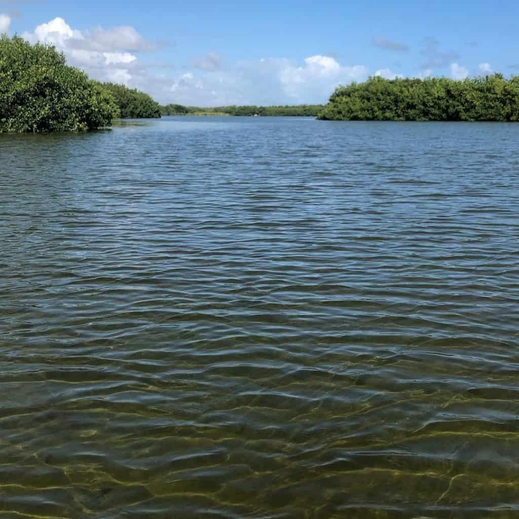 Bavaro Lagoon in Punta Cana
